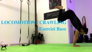 movement training esercizi base locomotion crawling