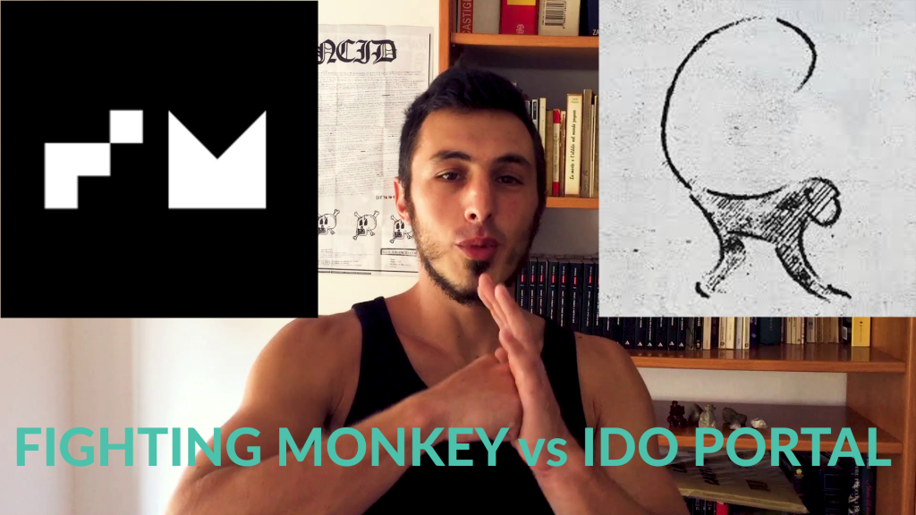 ido portal vs fighting monkey: la falsità dell'isolamento?