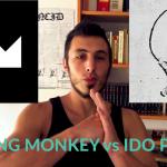 ido portal vs fighting monkey: la falsità dell'isolamento?