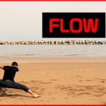 Imparare a fare il FLOW - Allenamento - Movement Training